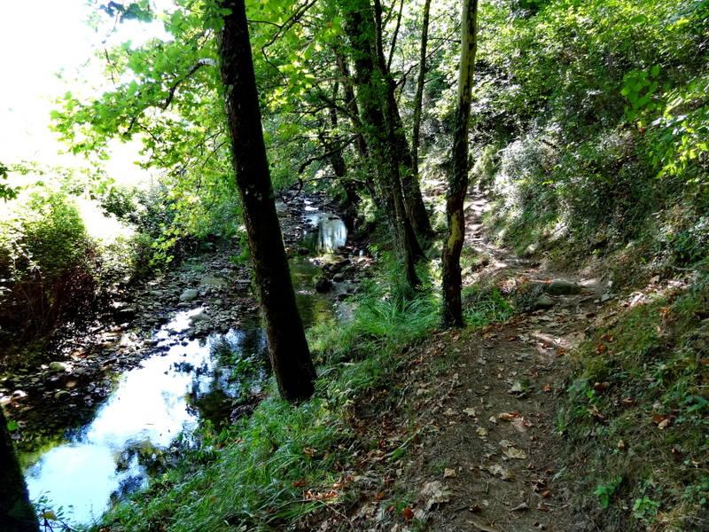 путь камино де сантьяго